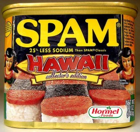 SPAM the Hawaiian Steak