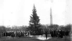 300px-US_National_Christmas_Tree_1923