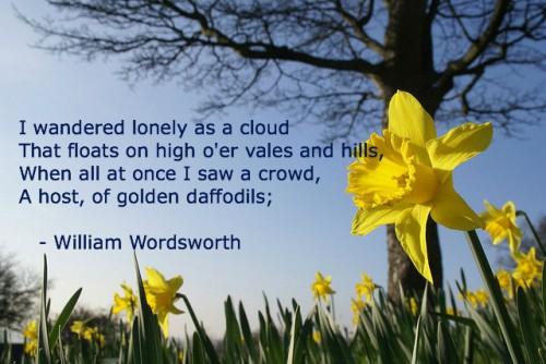 wordsworth-lonely-daffodils2-500x334